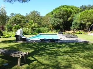 Photo piscine pinède
